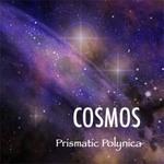 cosmos.jpg